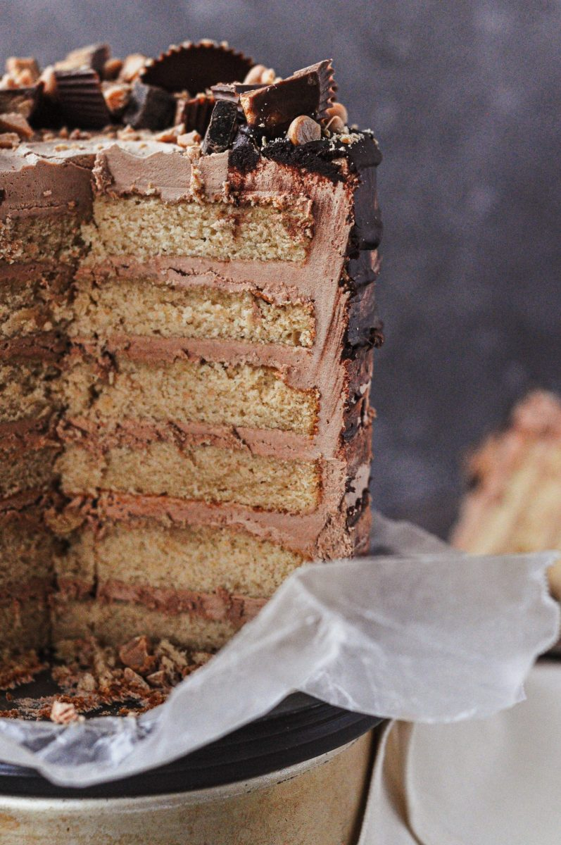 The inside shot of a peanut butter cake with six layers and chocolate frosting betwen each cake layer.